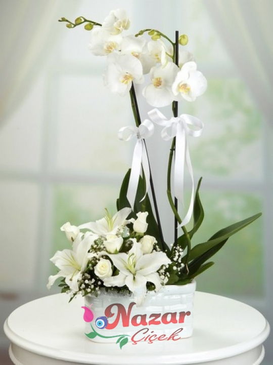 Beyaz Orkide Lilyum Gül