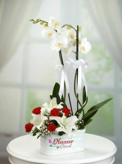 2 Dal Orkide Arajmanı