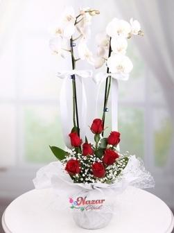 2 Dal Orkide ve Kırmızı Güller
